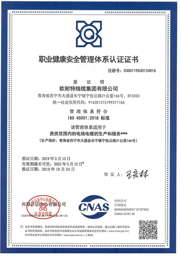 職業健康安全管理體系認證證書