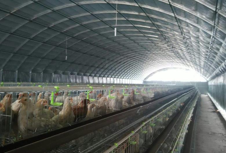 青海某养殖基地案例
