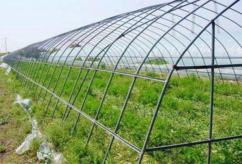 拱形温室大棚