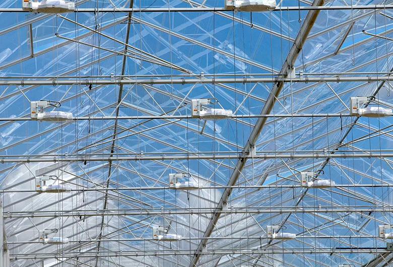 玻璃温室大棚建成后必须注意养护
