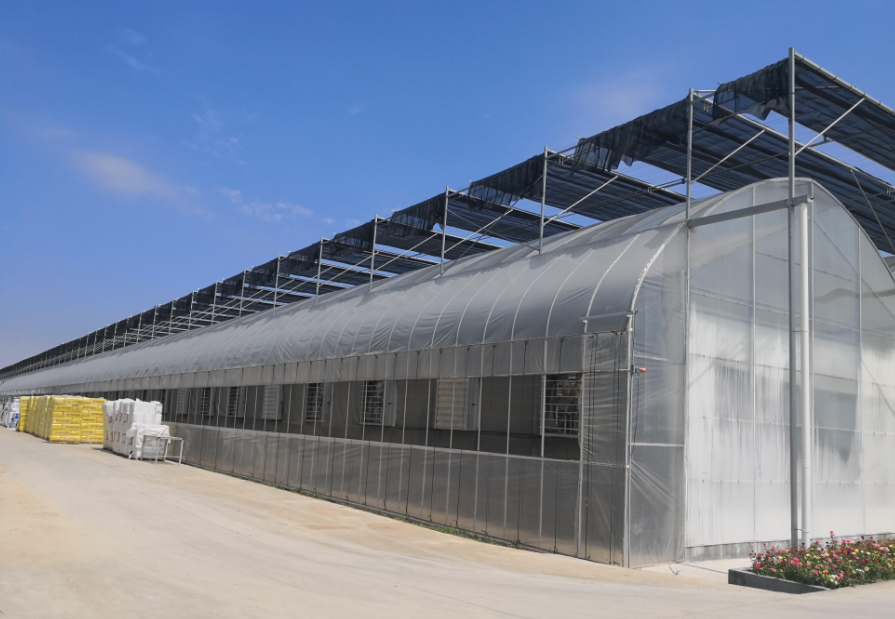 博瀚農業提醒夏季溫室大棚一定要做好排水工作