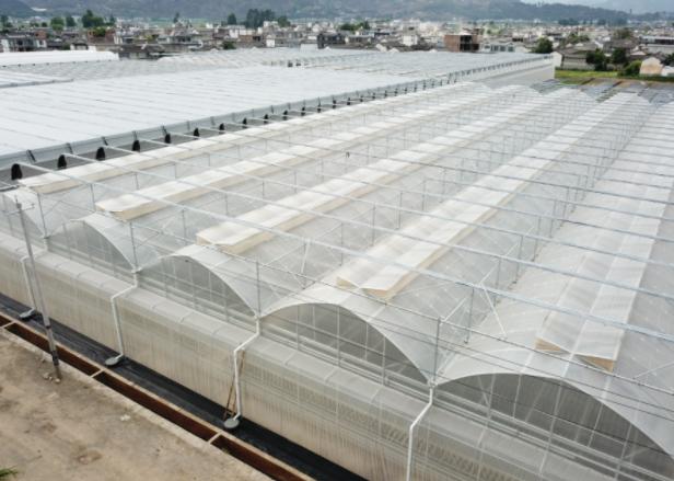 智能玻璃温室大棚在农业方面发挥着重要的作用