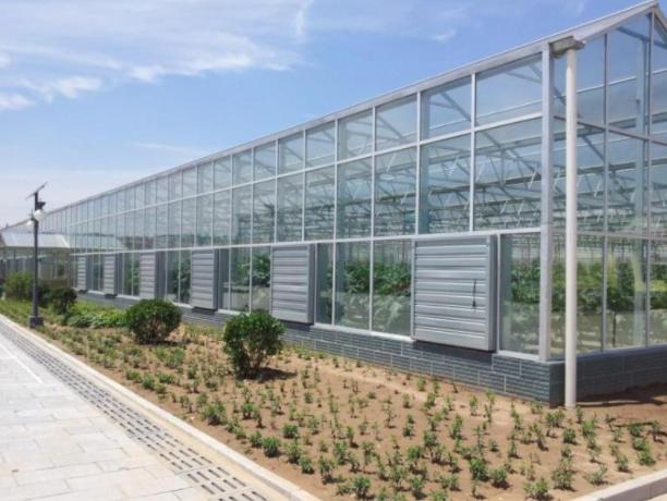 不同材质类型的温室大棚功效各不相同
