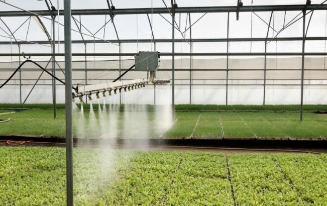 博瀚农业分享不同类型的温室大棚保温效果也不一样
