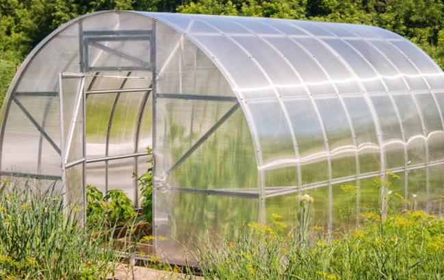 蔬菜溫室大棚改變放風方法促高產
