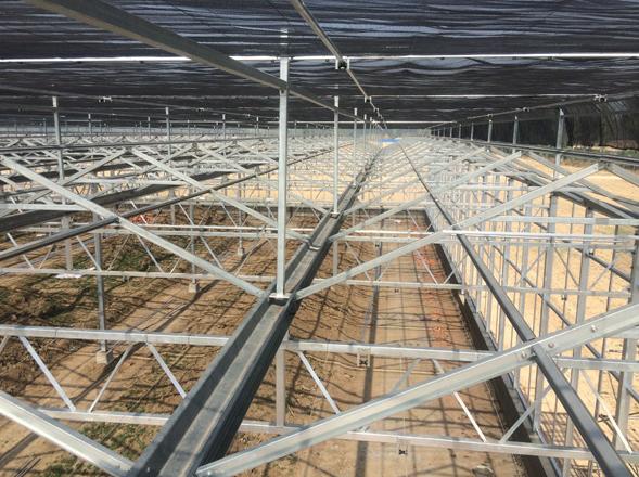 温室大棚在种植时要注重土壤的质量
