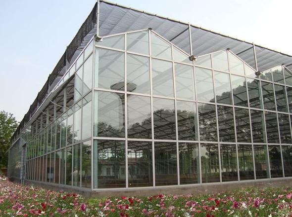 在异常气候下,温室大棚种植就要格外的上心