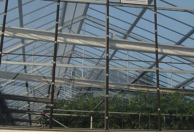 蔬菜溫室大棚在冬季的通風換氣技巧