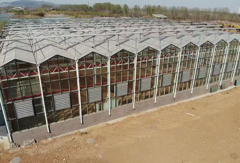 现代玻璃温室大棚造价