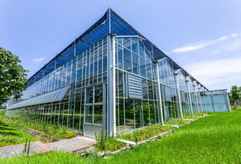 果蔬温室大棚