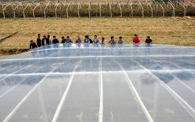 蔬菜温室大棚的棚膜选用多厚的比较合适