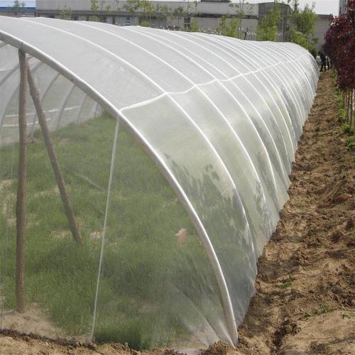 蔬菜温室大棚安装防虫网可以防止虫害