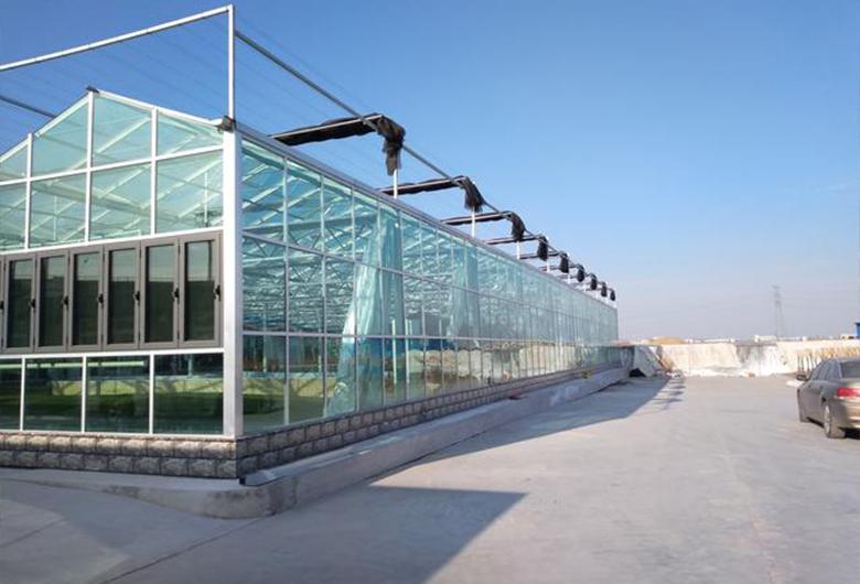 蔬菜温室大棚种植