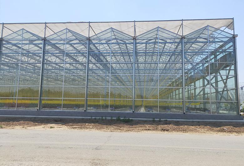 青海玻璃温室大棚