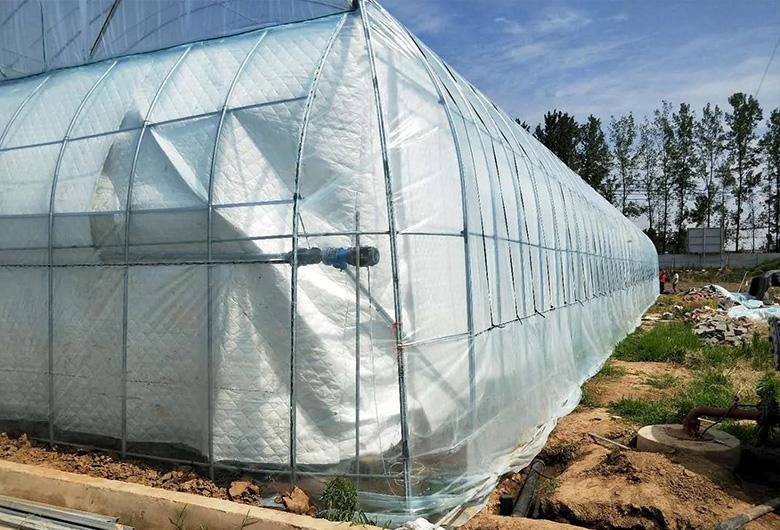 农业薄膜温室大棚