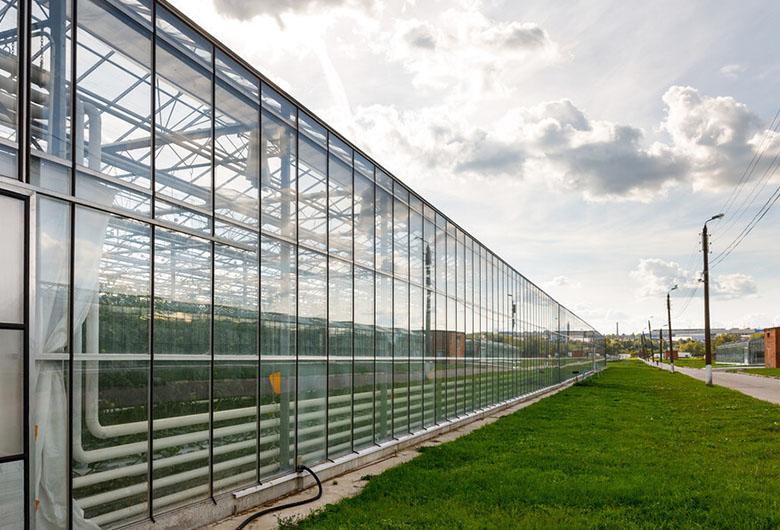 關于玻璃溫室大棚的調控濕度方法