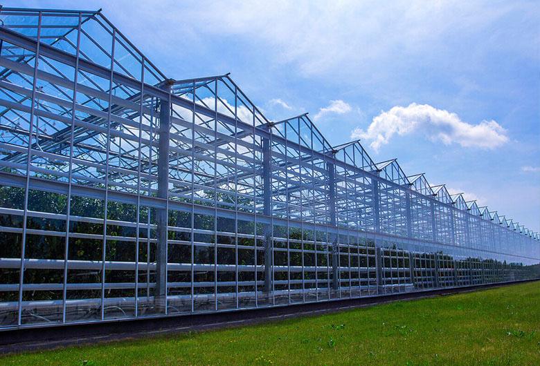 海东新型温室大棚
