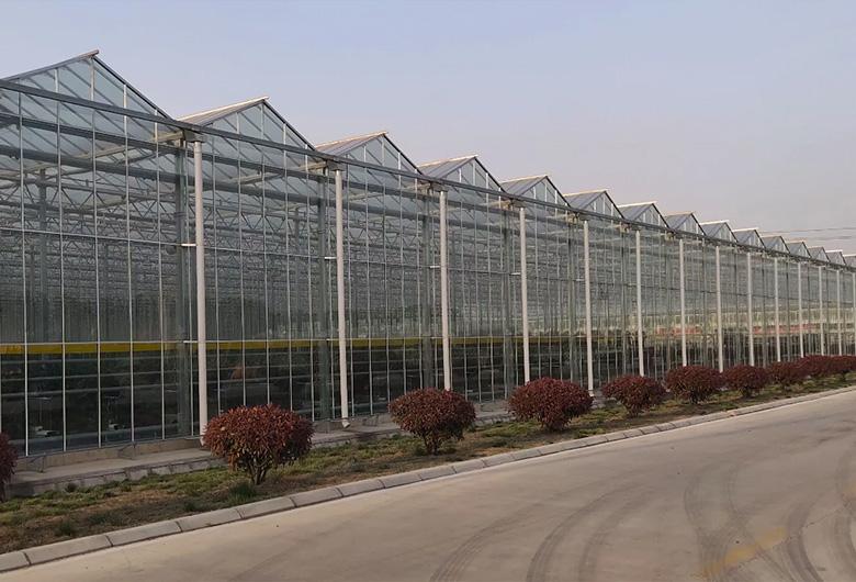 西宁蔬菜温室大棚