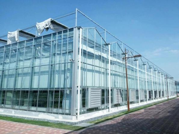 温室大棚厂家建议建造大棚时要使用钢架构