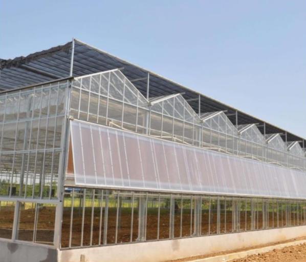 青海连栋温室对蔬菜的成长影响