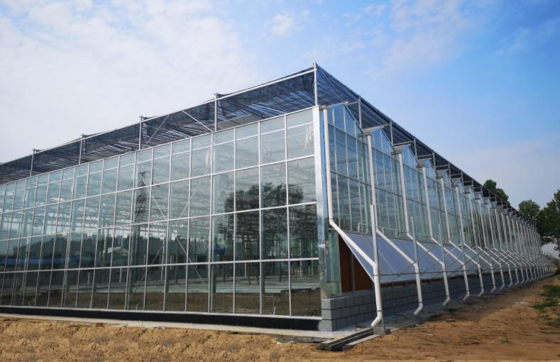 智能温室大棚为何如何受宠?