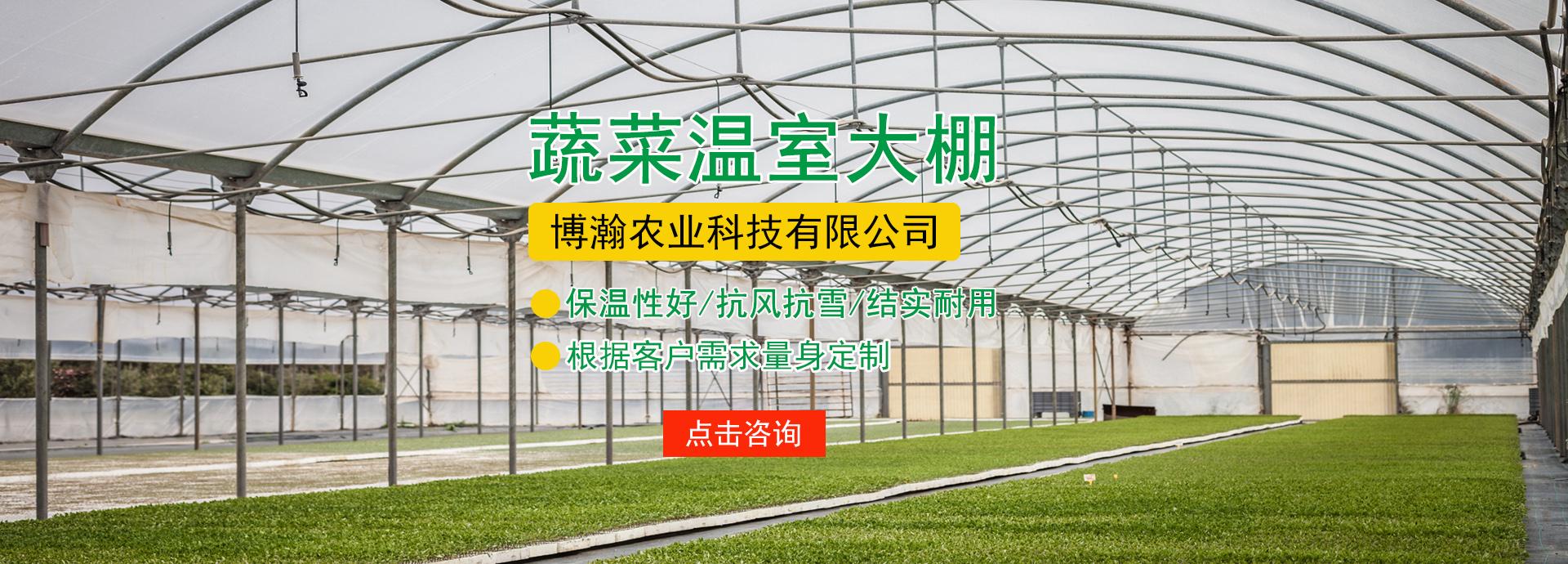 青海温室大棚