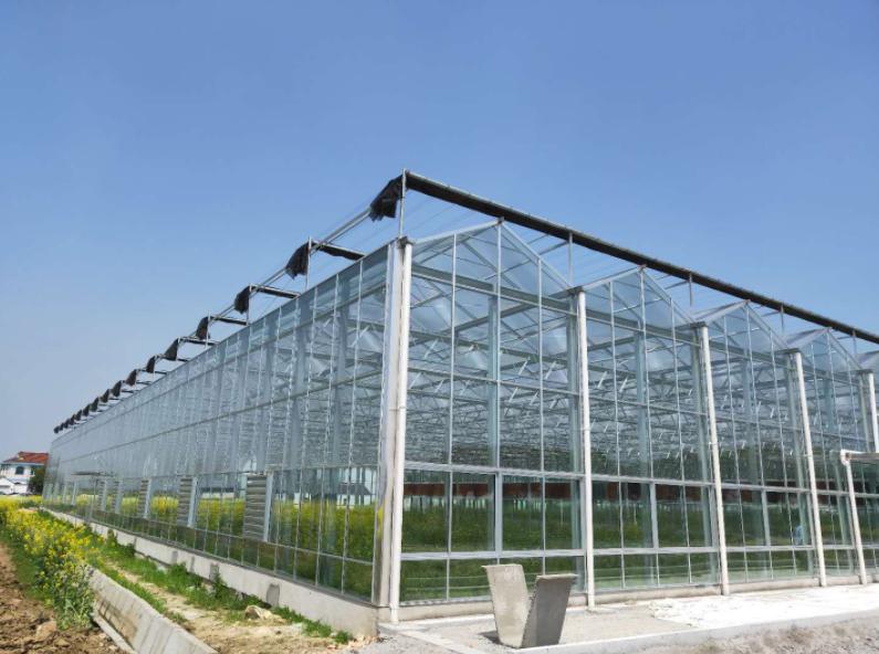 玻璃温室大棚在建造时需要考虑阻燃和照明