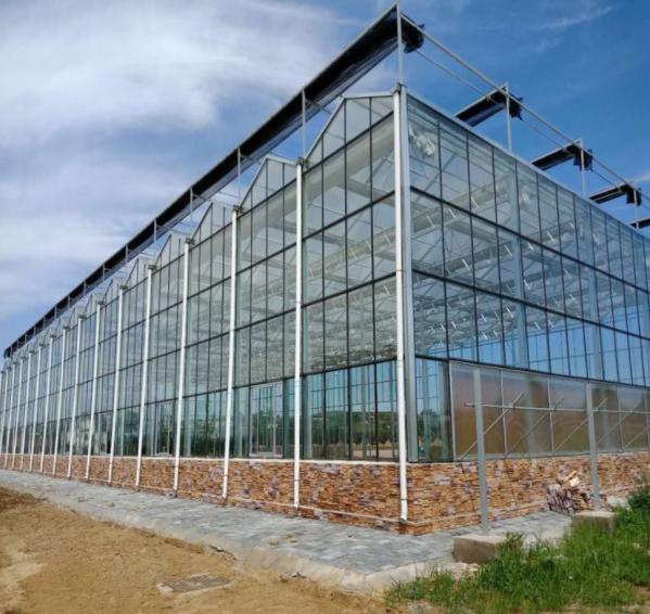 玻璃温室大棚建设中容易出现哪些细节问题?