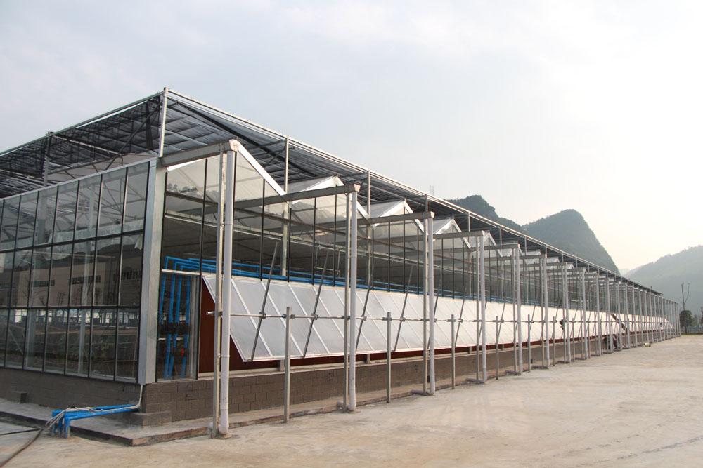 青海养殖温室大棚