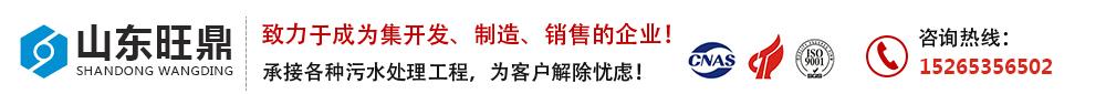 山东旺鼎污水处理设备生产厂家
