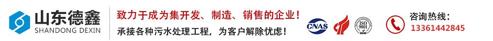 山东德鑫污水处理设备生产厂家