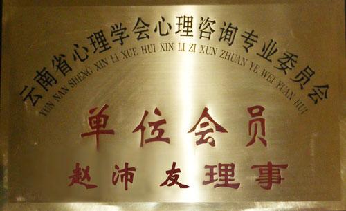 云南省心里学会心里咨询专业委员会