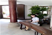 古筝教师-张老师
