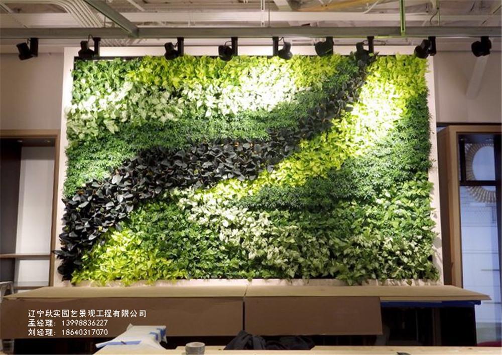 沈阳橱窗植物墙