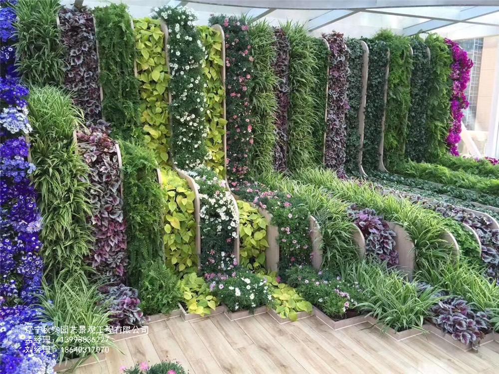 沈阳垂直绿化植物墙