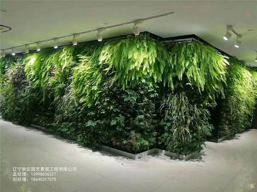沈阳大型植物墙
