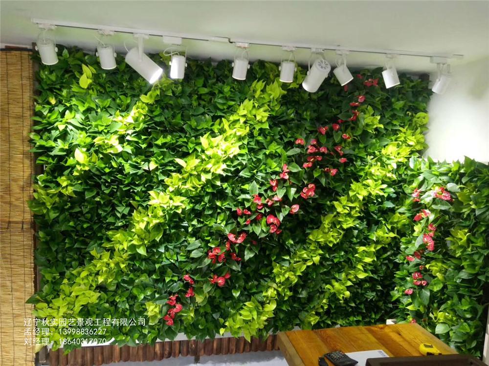 沈阳花草绿植墙
