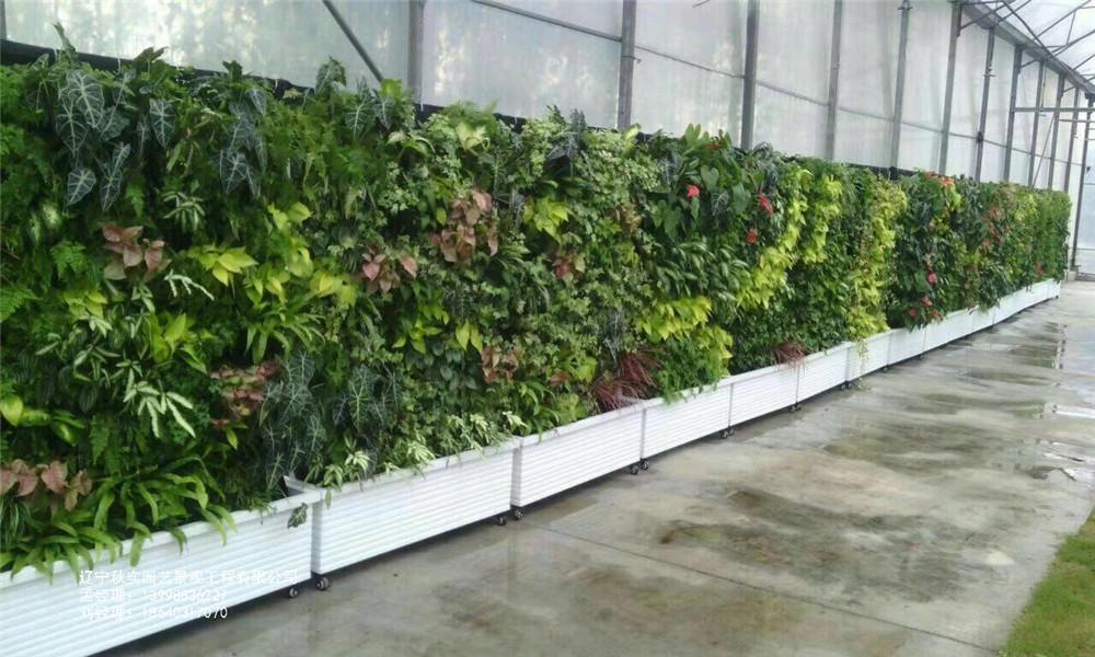 沈阳景观植物墙