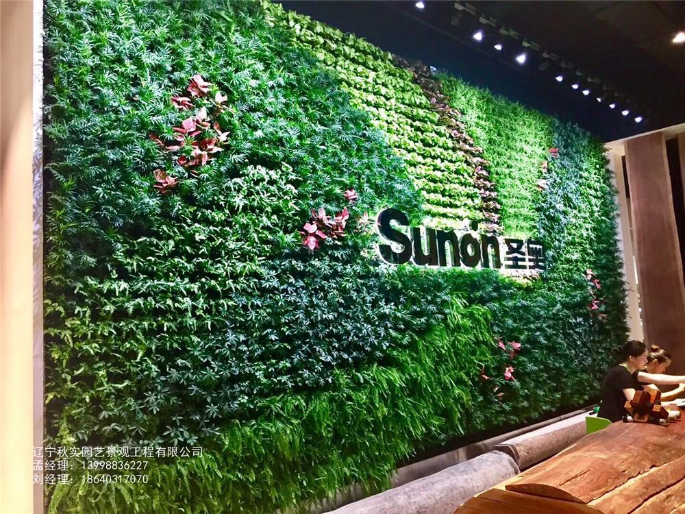 沈阳墙体植物墙