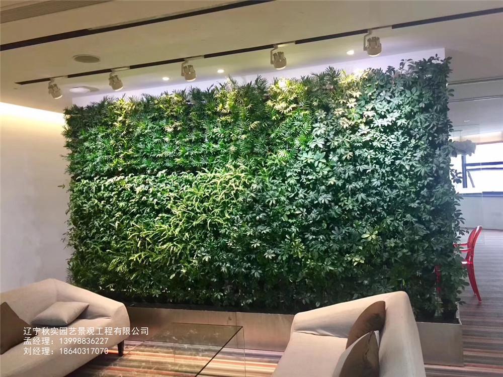沈阳室内绿植墙