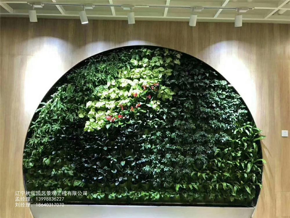 沈阳庭院植物墙