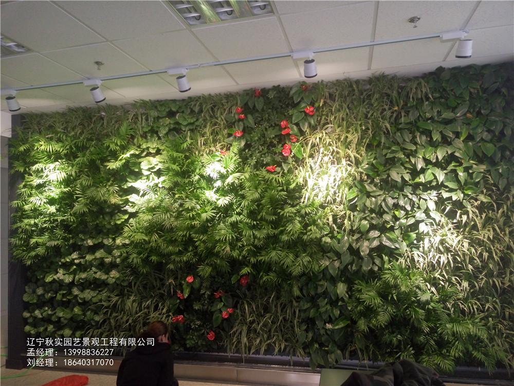 沈阳小型绿植墙