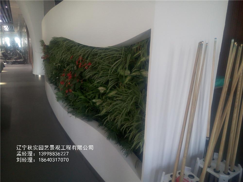 沈阳室内植物墙