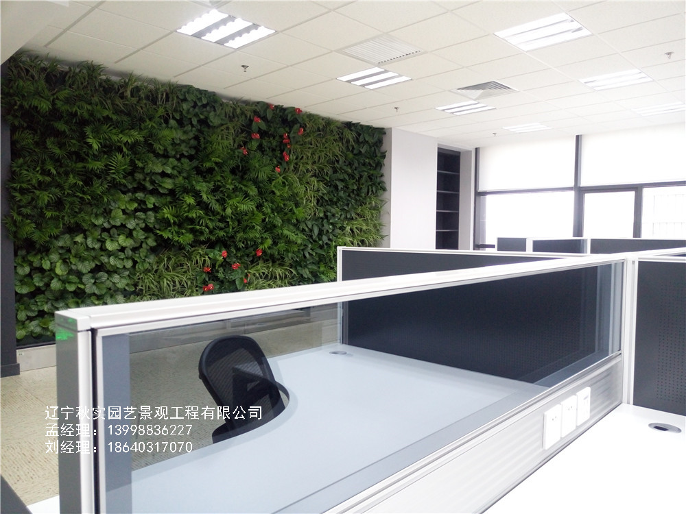 沈阳植物墙