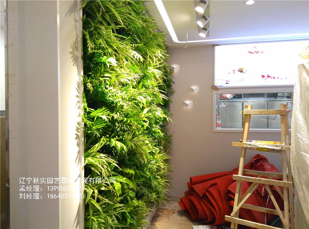 做植物墙,不注意这五大问题,注定要失败