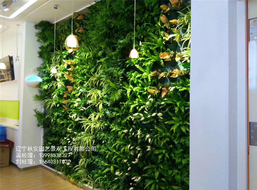 植物墙在家装环境中的应用