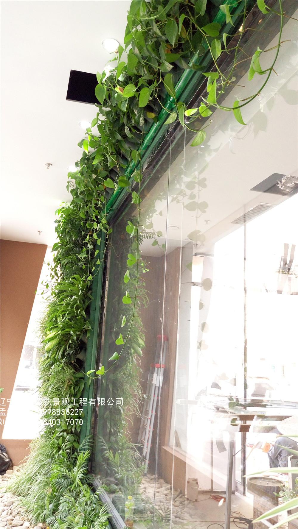 植物墙定制需要注意那几点?