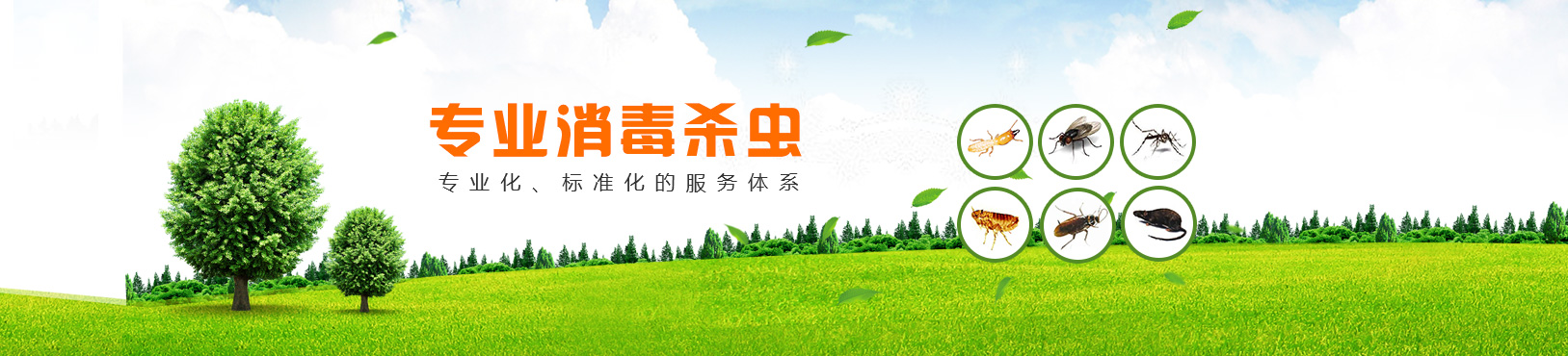 重庆杏耀平台注册登录公司