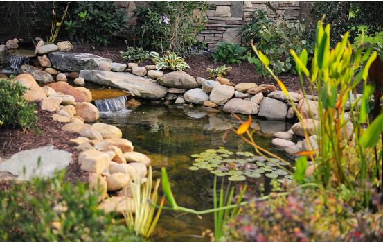 为什么有庭院都要做鱼池?不光是赏心悦目,还能带来好运