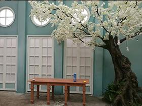 室内仿真树设计